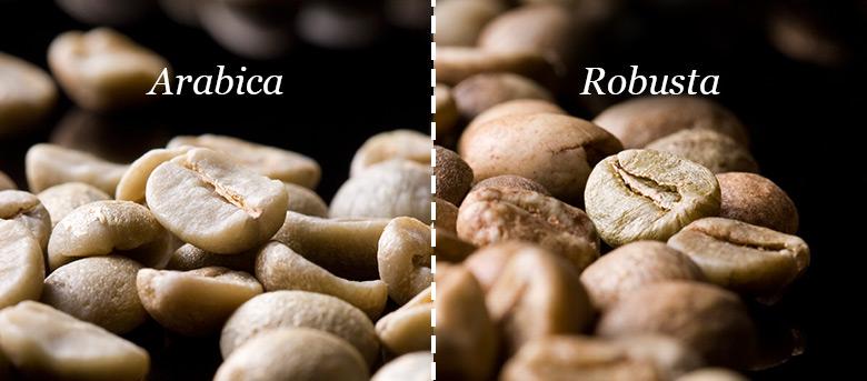 arabica robusta mokashop.ch